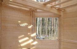 Лес в окне :)