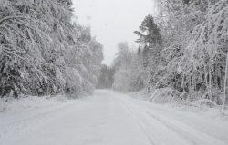 Снег на Селигере выпал резко и много. :)