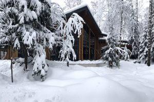 Зима в «Лесном Ручье»…)