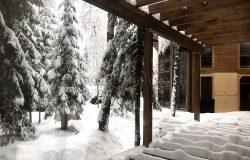 А елки как невесты в снегу...