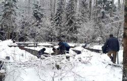 А деревья все в снегу... Как в сказке!